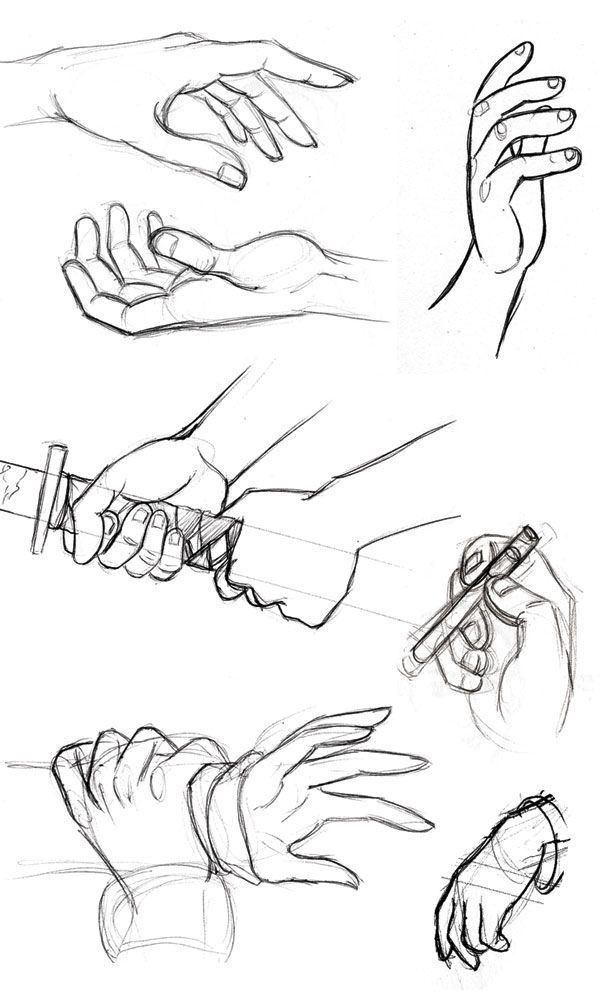 600x1000 Hands Holding Things Drawing Art Reference