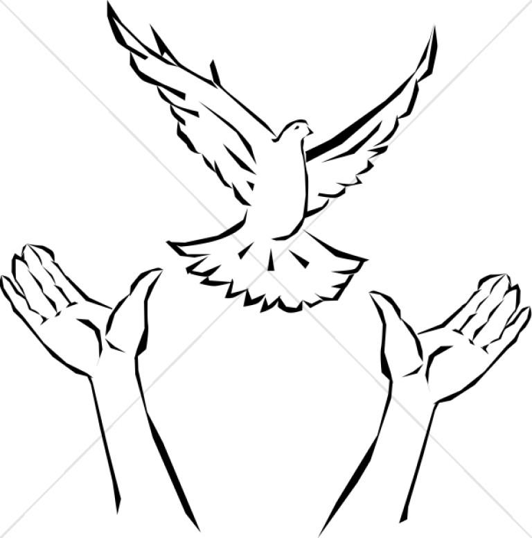 768x776 Hands Releasing Dove Dove Clipart