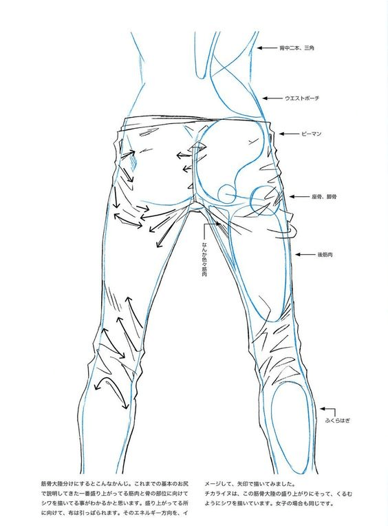 564x764 Pin By Nisanur Hapil On Sketch All Drawings, Anatomy