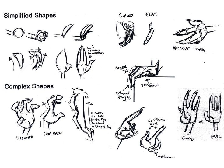 736x552 58 Best Hand References Images On How To Draw Hands