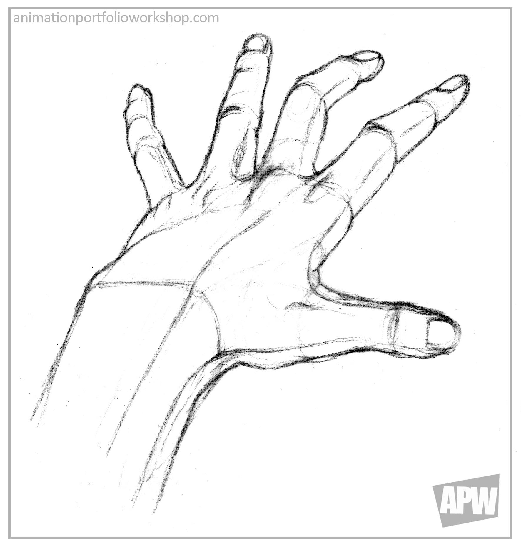 1772x1860 Adult Hand Drawing Hand Drawing Video. Hand Drawing Presentation
