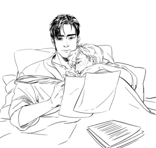 500x473 Percival Graves Is Handsome Tumblr