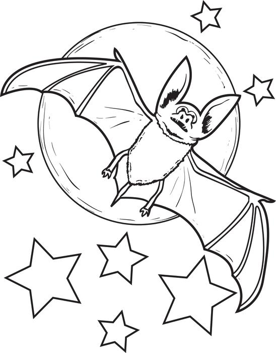 548x700 Coloring Page Of A Bat