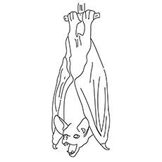 230x230 Coloring Pages Glamorous Bat Coloring Pages The Hang On 17 Bat