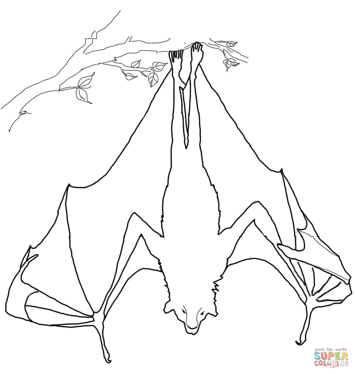 1200x1264 Flying Fox Hanging Upside Down Coloring Page Free Printable