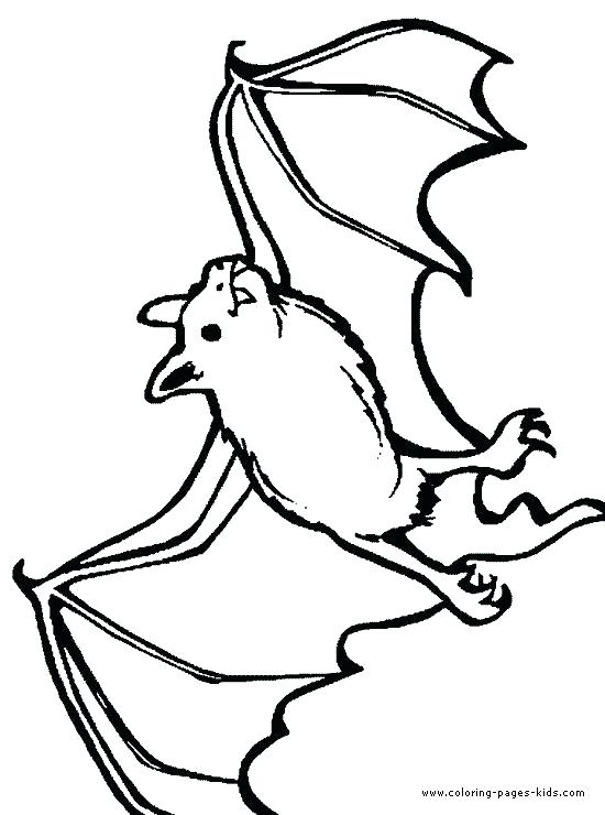 550x740 Rouge The Bat Coloring Pages Coloring Page Of A Bat Printable