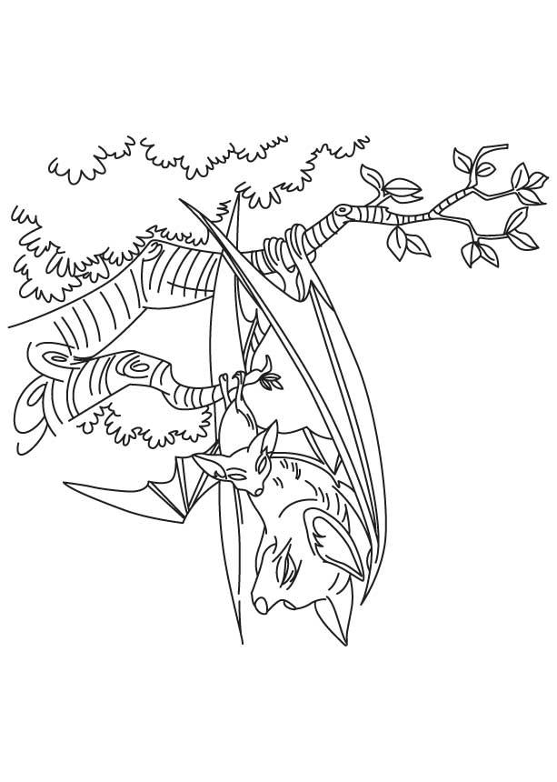 613x860 Bat Hanging Tree Coloring Page Download Free Bat Hanging