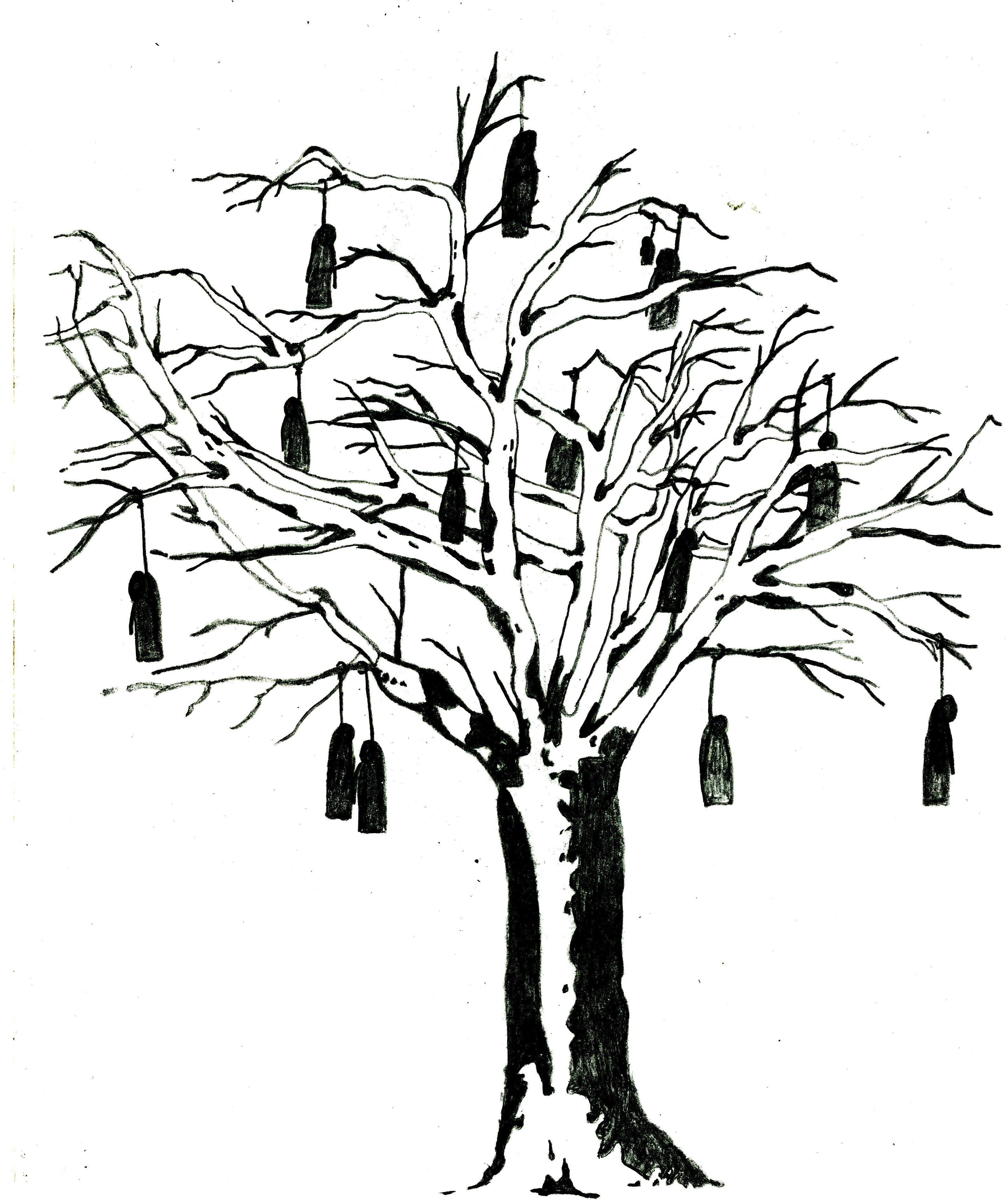 3166x3768 Family Tree Idea Beginning Mscragg Illustration