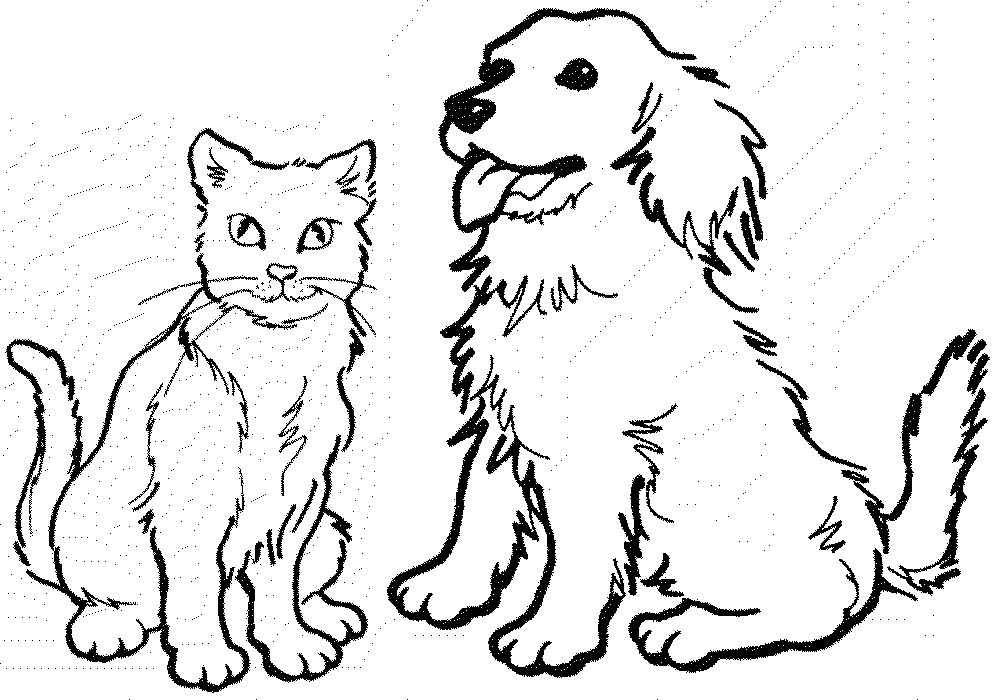 1000x700 Happy Cat And Dog Coloring Pages Top Coloring