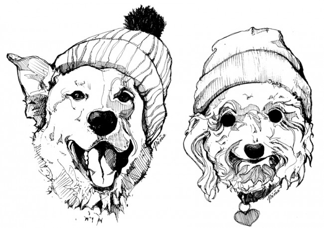 650x458 Dogs In Toques Ink Drawing, Angie Roussin Idea Cache Tofino