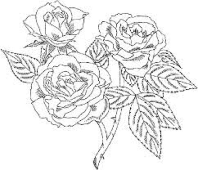 650x558 Remarkable Hard Flower Coloring Pages 27 About Remodel Picture