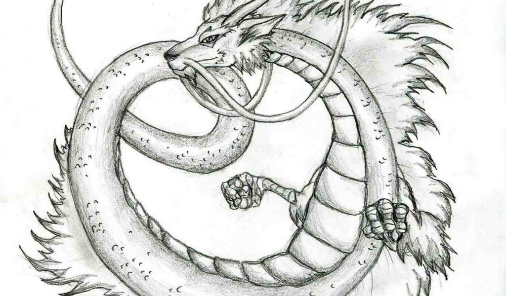 1024x600 The Images Collection Of Dragon Sketchus By Katie Pfeilschiefter