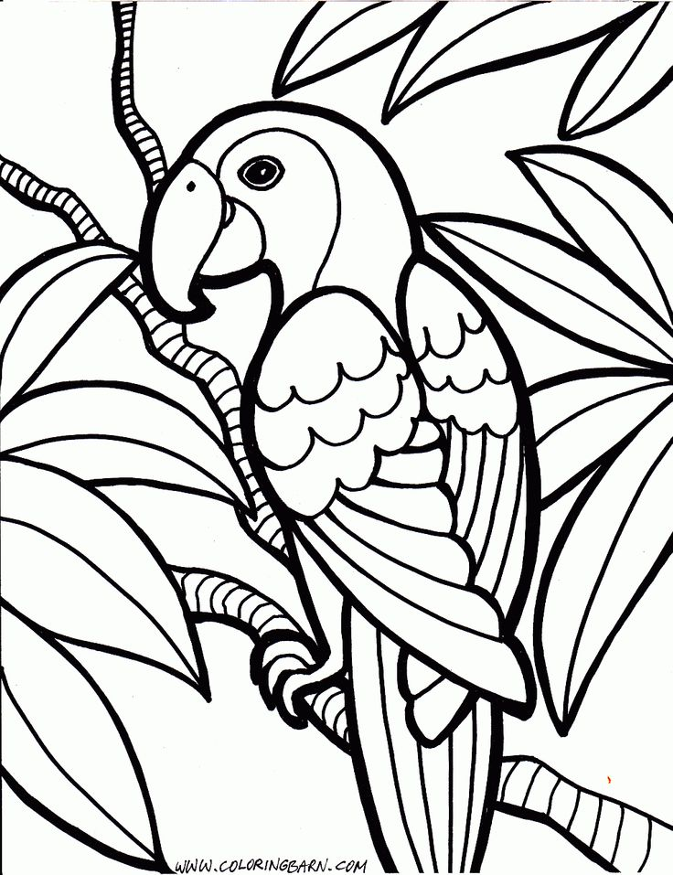 736x957 Ideas About Coloring Pages For Kids Colori On Hard