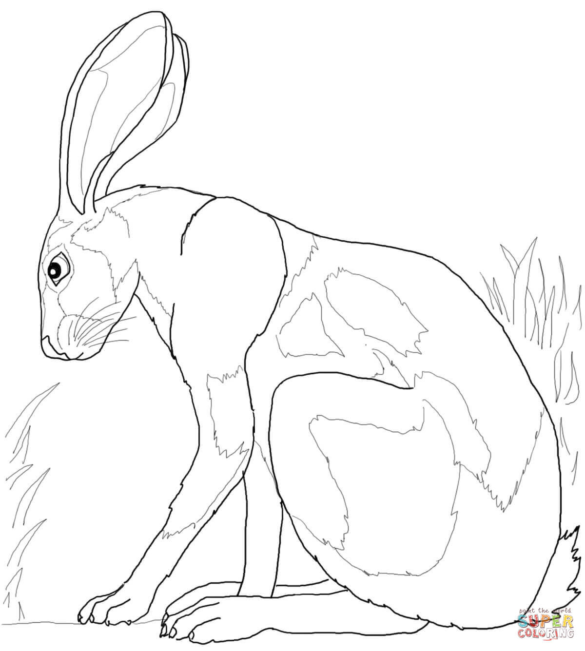 1200x1336 Hares Coloring Pages Free Coloring Pages