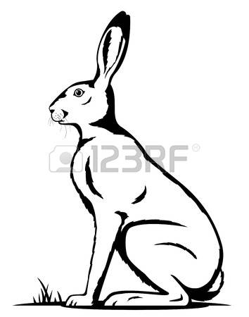 354x450 Image Result For Sitting Hare Drawing Ceramics