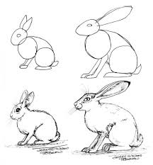 216x233 How To Draw A Hare