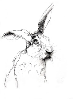 238x320 Hare Line Drawing
