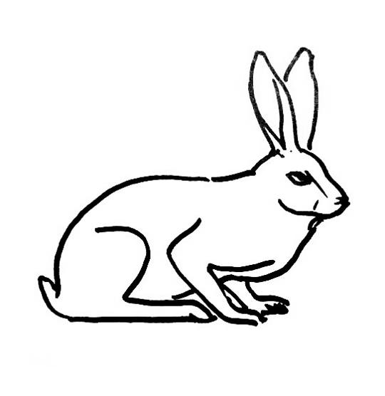 540x556 Hare Coloring Pages