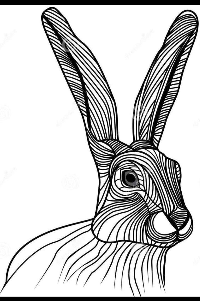 640x960 Hare Line Drawing Craft Projects On The Go Croquis