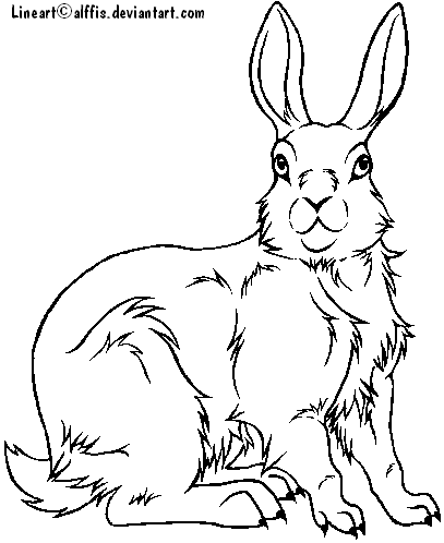 407x498 Rabbit Lineart Free To Use By Alffis