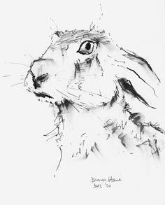 236x293 The Tortise Amp The Hare