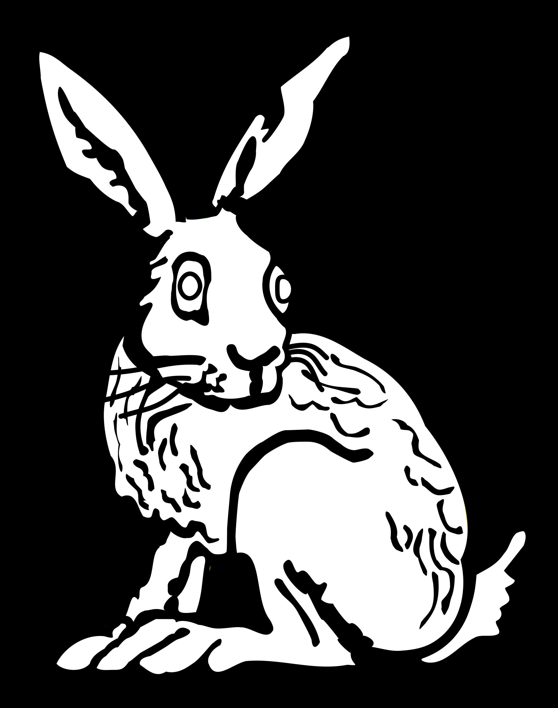 1893x2400 Rabbit