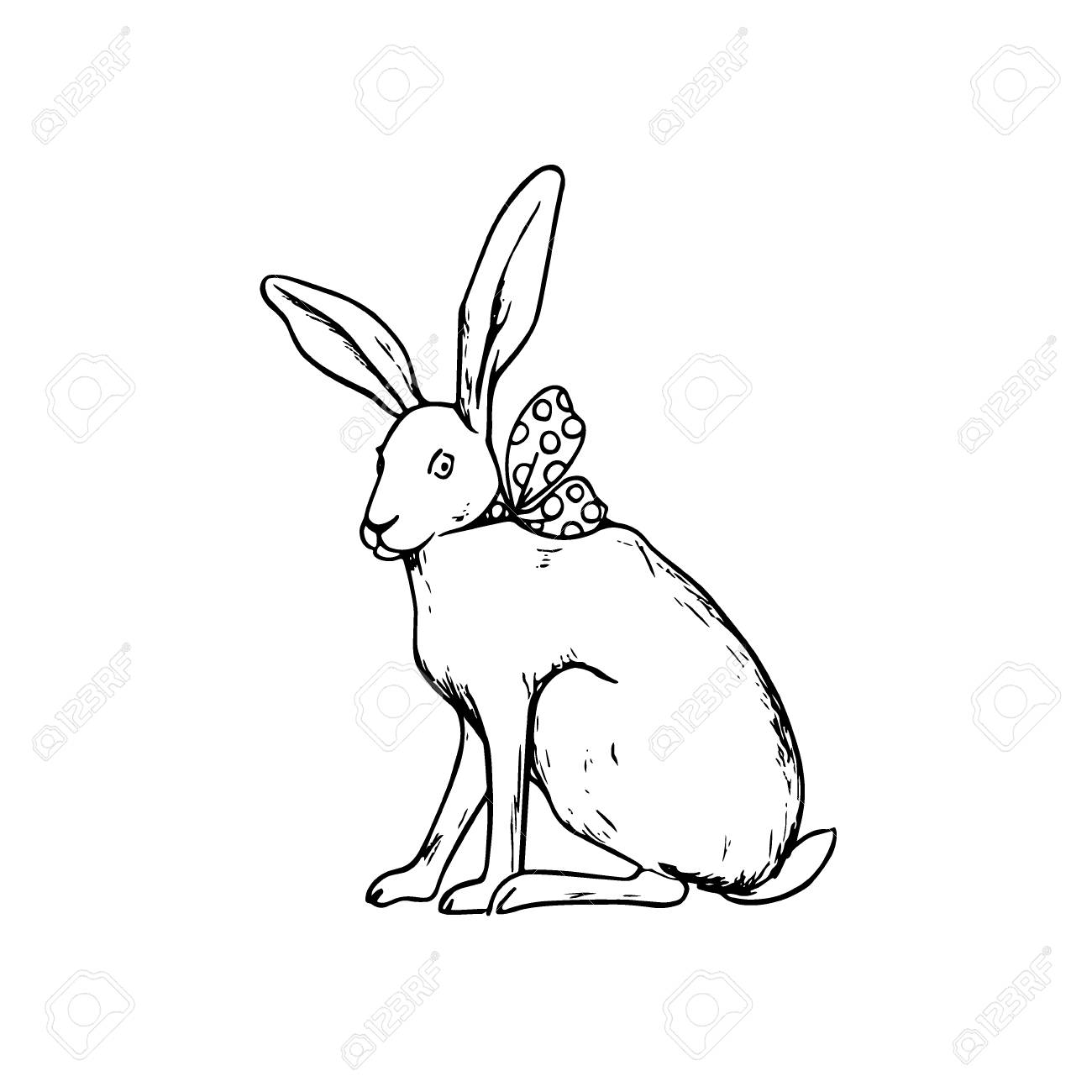 1300x1300 Hand Drawn Hare Stock Photo, Picture And Royalty Free Image. Image