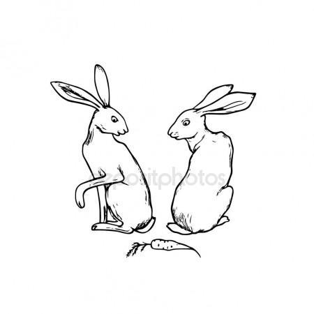 450x450 Hand Drawn Hares Stock Vector Ezhevica