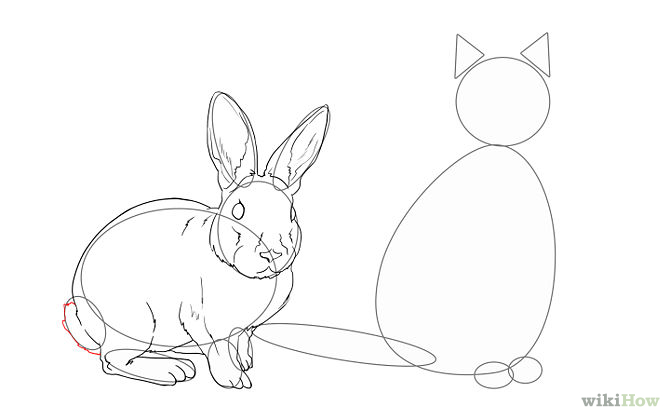 670x419 How To Draw Animals Online Drawing Lessons