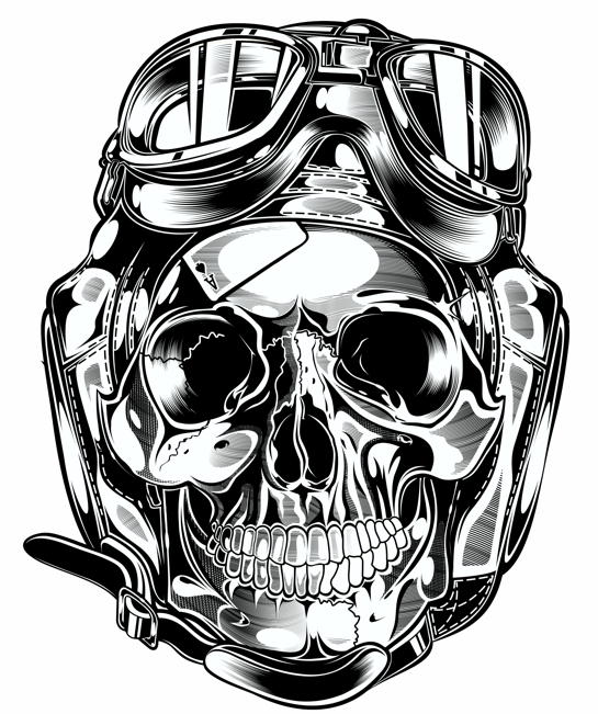 545x651 Skull Amp Pistons