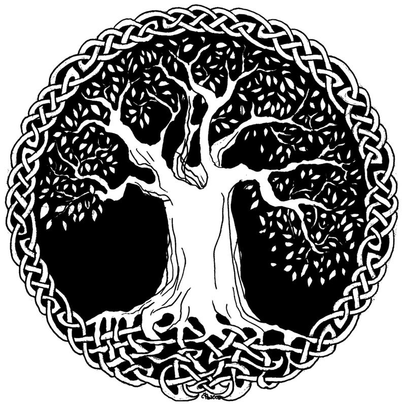 800x800 My First Tattoo. The Celtic Tree Of Life Symbolizing Balance