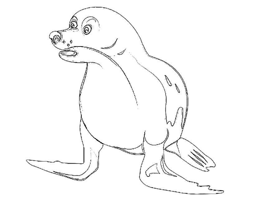 825x638 Seal