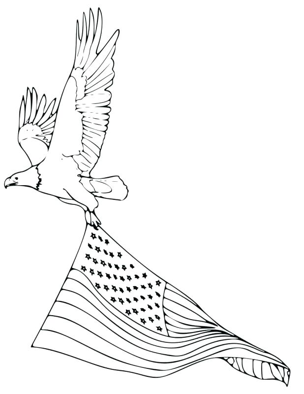 618x800 Eagle Color Page Golden Eagle In Flight Coloring Page Harpy Eagle