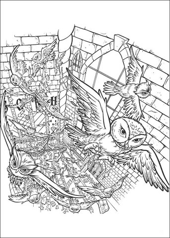 343x480 Owls In The Castle Coloring Page Free Printable Coloring Pages