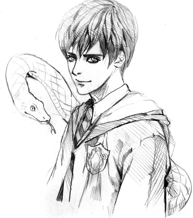 800x905 Harry Potter Fan Art Tom Skt By Moto0207