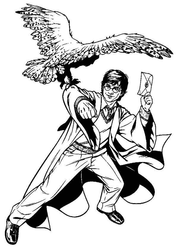 600x834 Harry Potter Send A Letter Using Hedwig Coloring Page