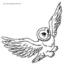 236x222 Hedwig Hp Coloring Pages Hedwig