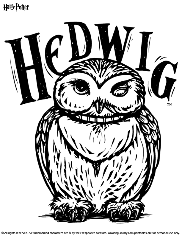 612x792 Hedwig The Owl