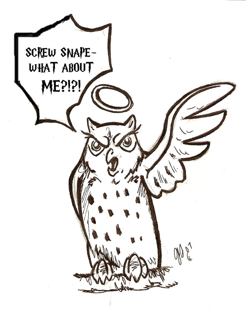 800x1025 Pissed Off Hedwig By Ashwin24