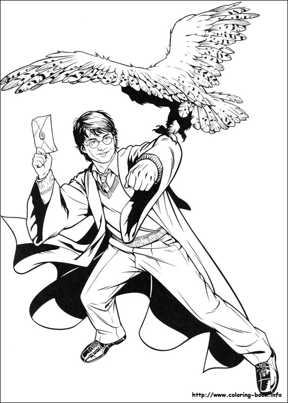 567x794 Potter Coloring Picture