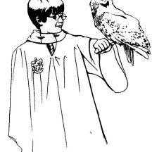 216x216 Harry Potter Netart