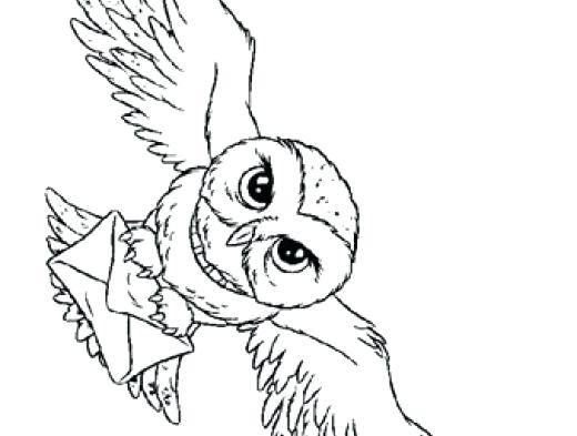 520x393 Hogwarts Crest Coloring Page Harry Potter Coloring Picture