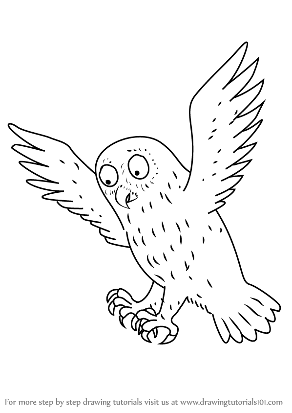 598x844 Learn How To Draw Owl From The Gruffalo (The Gruffalo) Step By