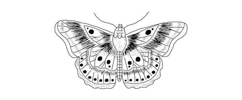 800x331 Harry Styles Butterfly Tattoo Mugs By Melissacascio Redbubble
