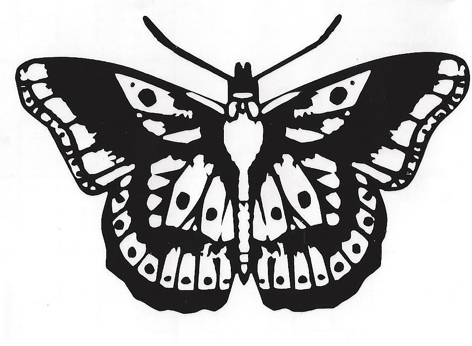 955x700 Harry Styles Butterfly Tattoo By Willow Hudson Redbubble