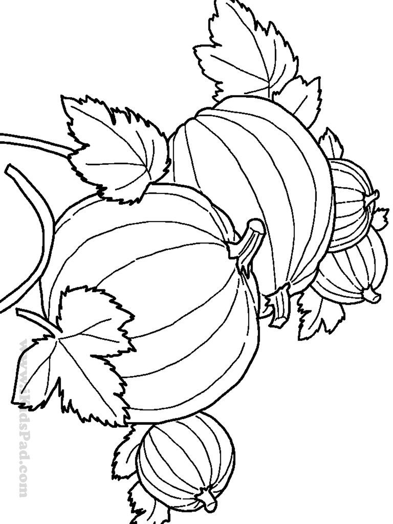 Harvest Drawing at GetDrawings.com | Free for personal use Harvest ...
