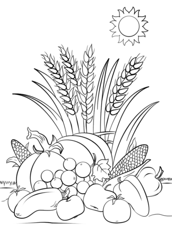 340x480 Fall Harvest Coloring Page Free Printable Coloring Pages