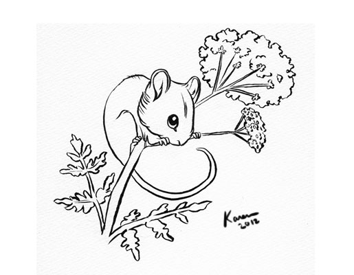 515x400 Harvest Mouse By Kayjkay