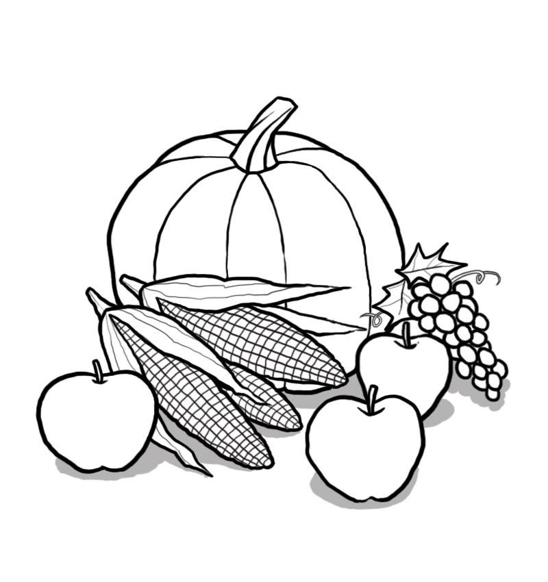 800x850 Harvest Time