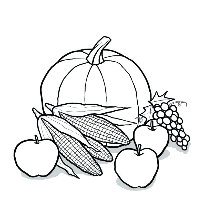 800x850 Harvest Coloring Pictures Fall Autumn Harvest Coloring Pages